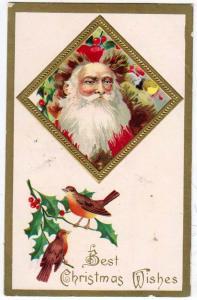 Santa Looking in Window
