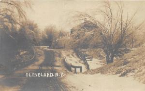 Cleveland New York~Winter Scene in Country~Snow on Trees-Bridge~c1910 RPPC