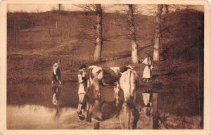 B76916 Port Popular Taranci cu vacile cow types folklore costumes  romania