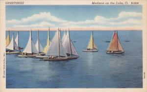 Ohio Greetings From Madison-On-The-Lake 1951 Curteich