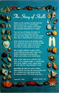 Postcard The Story of Sea Shells Poem Copyright 1956 Florida Unposted 1552