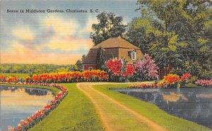 Middleton Place Gardens Charleston, South Carolina