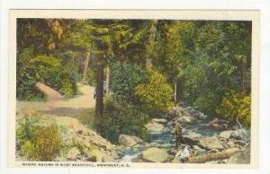 Nature Scene in Montreat, North Carolina, 1910-20s