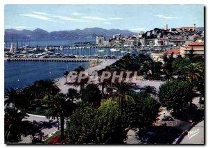 Modern Postcard Cannes Le Jardin and Le Suquet