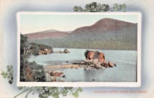 KILLARNEY KERRY IRELAND~COLLEEN BAWN ROCK-SHAMROCK FRAME PHOTO POSTCARD
