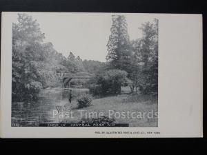 USA: NEW YORK CITY - Scene in Central Park c1905 UB