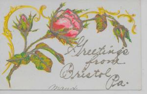 Bristol Pennsylvania Greetings From flowers glittered antique pc Z18026