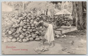 Zanzibar Tanzania~Farm Worker: Cocoanut Husking~Mountain of Coconuts~c1910 B&W