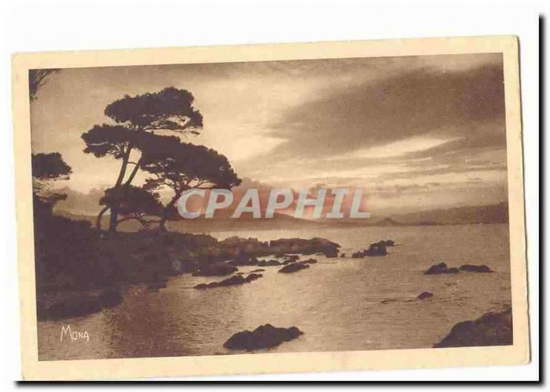 island Saint Honorat Vintage Postcard One to lay down sun seen of Lerins