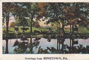 Pennsylvania Ringtown A Beautiful View Greetings