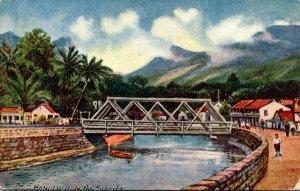 Hawaii Honolulu Scene In The Suburbs