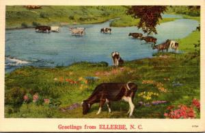 North Carolina Greetings From Ellerbe 1941