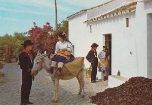 Algarve Portugal House Chalet Pony Donkey Ride Fashion Photo Costume Postcard