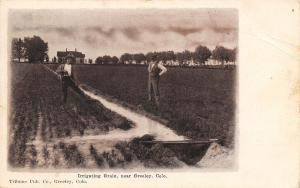 Greeley Colorado~Irrigating Grain~Farmer & Businessman in Field~1908 Postcard