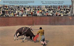 The Callenge of the Matador, Plaza de Toros Tarjeta Postal Bullfighting Tijua...