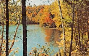 SHARBOT LAKE ONTARIO CANADA-SABO'S ESSO STATION GREETINGS POSTCARD