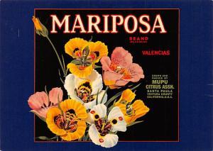 Mariposa - California