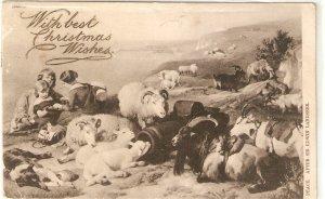 Peace,after Sir Edward Landseer  Tuck Art Christmas Ser, PC # 1165