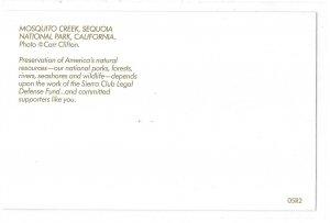 CA Mosquito Creek Sequoia National Park Carr Clifton Photo Sierra Club Postcard