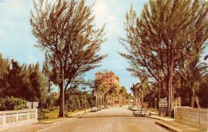 Bradenton Florida~Manatee River Bridge~Hotel~Signs~1950s Cars~Postcard