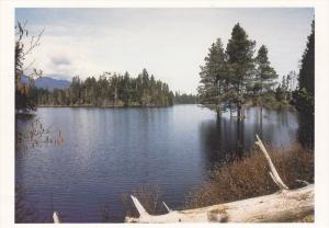 Spider Lake, Vancouver Island, British Columbia, Canada, 80s