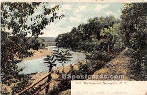 Neversink River - New York
