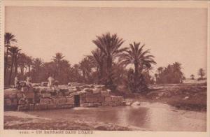 Algeria Un Barrage Dans L'Oasis