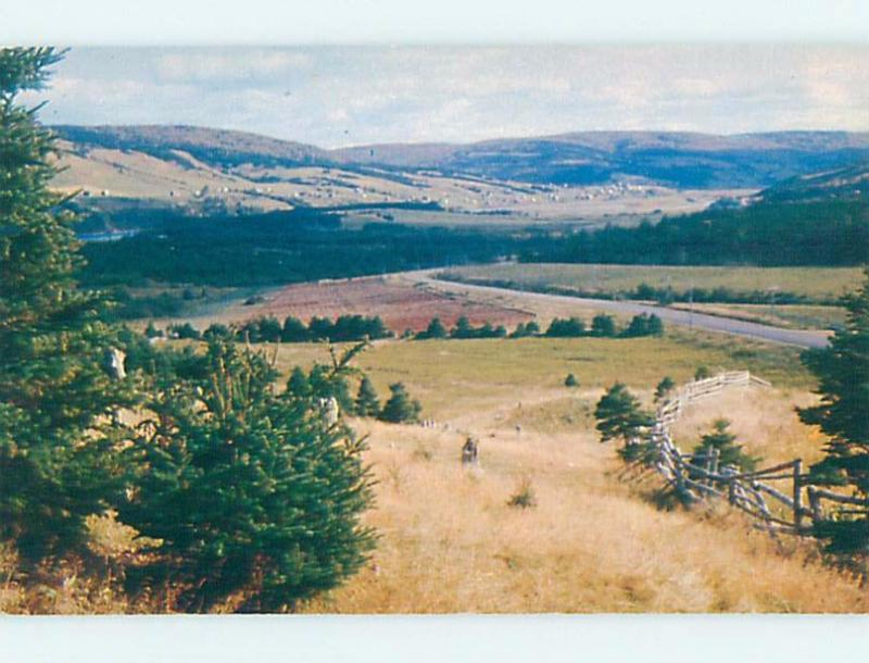 Pre-1980 PANORAMIC VIEW Margaree On Cape Bretton Island Nova Scotia NS F8622