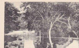 Missouri Cassville Barry County Twin Falls Roaring River