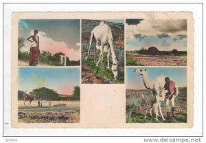 RP  Le Visage du Pays SOMAL, 30-40s