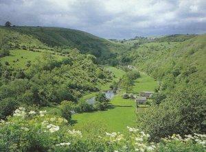 Derbyshire Postcard - Monsal Dale From Monsal Head - Derby - Ref 8220A