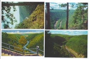 Pennsylvania Grand Canyon Scenes Tioga County PA (4 cards)