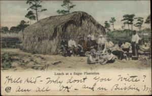 Trinidad? Lunch at Sugar Plantation c1905 Postcard
