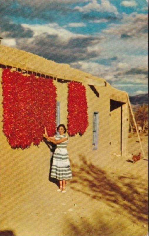 Chili Drying In The Southwest New Mexico