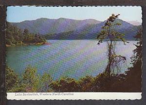 Lake Santeelah Western NC Postcard BIN