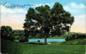 VTG Postcard Irish Hills US112 Near Detroit Michigan 1947 Vista Tree Pond 144