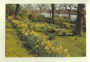 h0794 - Wootton Creek , Isle of Wight - postcard by Dixon