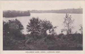 Connecticut Columbia Lake Looking West Albertype