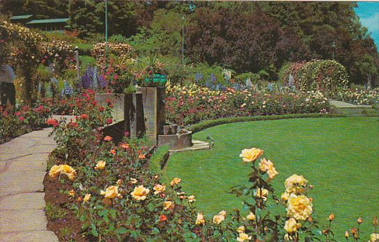Canada British Columbia Victoria The English Rose Garden The Butchart Gardens