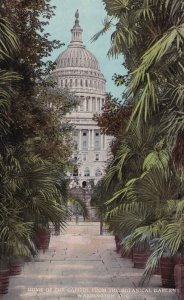 WASHINGTON D.C., 1900-10s; Dome of the Capitol from the Botanical Gardens