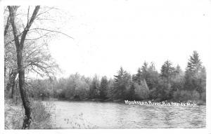Big Rapids Michigan~Muskegon River View~Trees on Shoreline~Mecosta County~RPPC
