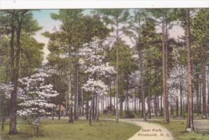 North Carolina Pinehurst Path Through Deer Park Handcolored Albertype