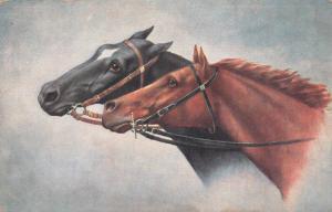 Early postcard horses horse