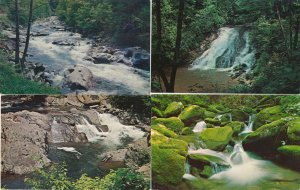 (4 cards) Mountain Streams - Great Smoky Mountains TN, Tennessee (or N.C.)
