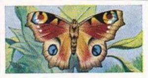 Swettenhams Tea Vintage Trade Card Butterflies & Moths 1958 No 20 Peacock But...