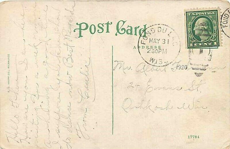 WI, Fond du Lac, Wisconsin, Palmer Hotel, Edward H. Mitchelc No. 17784