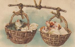 Three Kittens and Puppies asleep in Wicker Baskets, PU-1909