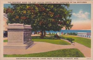 Massachusetts Plymouth Sarcophgau And English Tree Linden Trees Coles Hill 1947