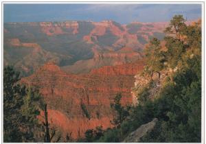 BR23131 Grand Canyon National park arizona  usa