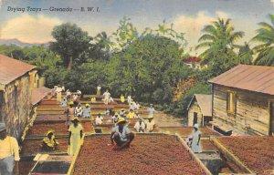 Drying Trays Grenada 1951 no stamp